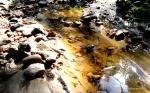 RioLeichtsinn.Kleine Touren.Wild gemixt (34)